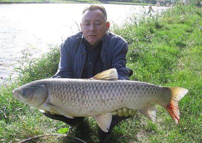 ryba100